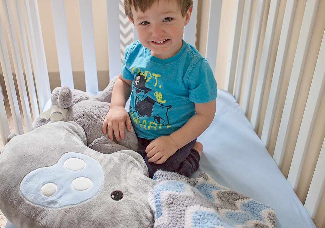 Chevron Baby Blanket (Free Pattern)