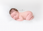 newborn baby on clean white background - Nashville newborn photographer