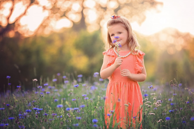 Little girl smelling flower in field - Middle Tennessee Child Photographer