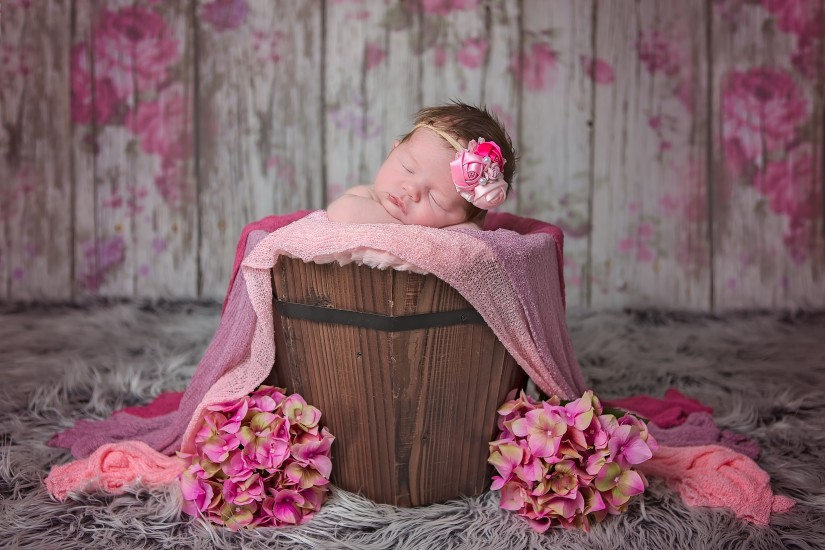 Newborn girl in wood bucket with pink flowers - Nashville Baby Photos